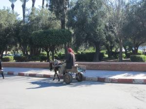 Donkeys were a common transportation vehicle.